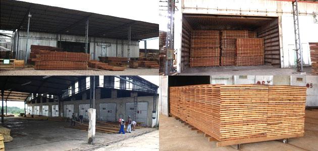 製材した材木を乾燥させます~業務用・ウッドデッキ材・ウッドフェンス材の通販なら、アマゾンジャラ専門店/イタウバ専門店 ハードウッドプロ