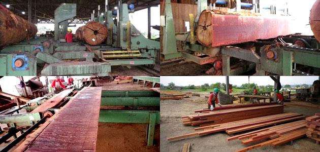 運び込まれたハードウッド(アイアンウッド)ウッドデッキ材木を製材します~ハードウッド(アイアンウッド)イタウバが安い!ウッドデッキ・ウッドフェンスにおすすめ、イタウバを激安/格安で直販・卸~業務用,ウッドデッキ材・ウッドフェンス材 イタウバが安い