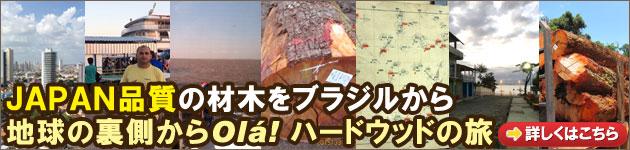 JAPAN品質の材木をブラジルから~地球の裏側からOlá!  ハードウッドの旅