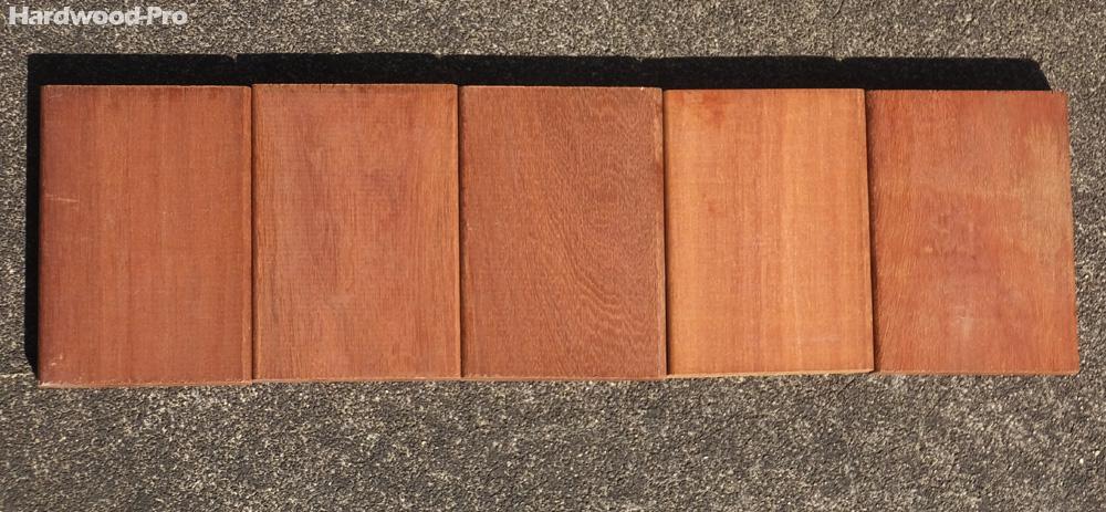 ハードウッドプロのアマゾンジャラ材サンプル(秋 午前 撮影) 耐久性が高く、ノーメンテナンスで30年以上長持ちします。